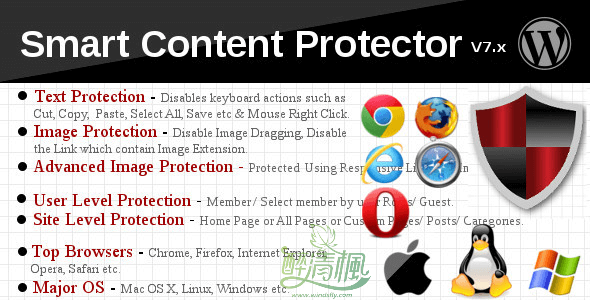WordPress保护类插件 – Smart Content Protector(汉化)[更新至v8.2] WordPress插件 第1张