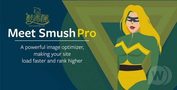 WordPress图像压缩插件 - Smush Pro(汉化)[更新至v3.6] WordPress插件 第1张