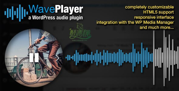 WordPress音乐播放器插件 -WavePlayer v2.4.3(汉化) WordPress插件 第1张