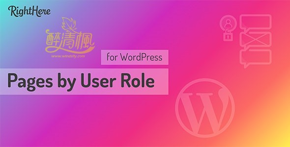 WordPress页面访问控制插件 - Pages by User Role v1.6.1.98877(汉化) WordPress插件 第1张