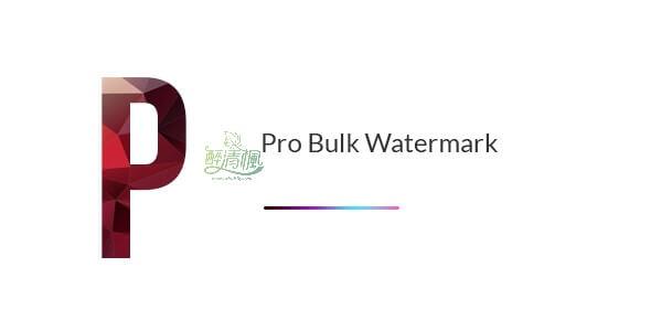 Wordpress水印插件 - Bulk Watermark v2.0(汉化) WordPress插件 第1张