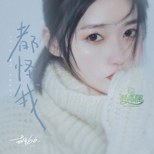 胡66(胡睿) - 都怪我 音乐故事 第1张
