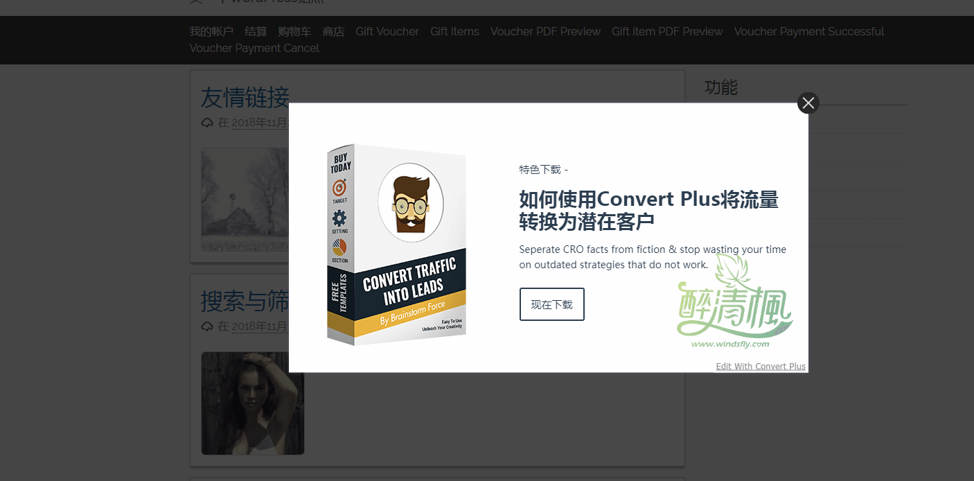 WordPress弹窗插件 - Convert Plus(汉化)[更新至v3.5.4] WordPress插件 第6张