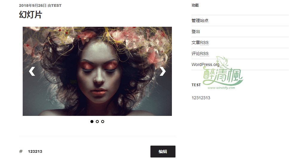 WordPress幻灯片插件 – Slider Pro v4.6(汉化) WordPress插件 第5张