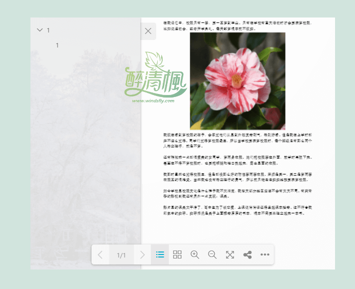 WordPress PDF浏览插件 - dflip v1.7.5.1(汉化) WordPress插件 第2张